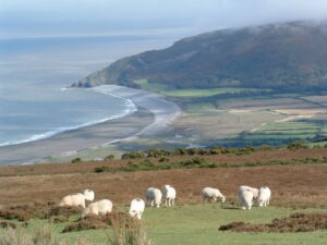 Exmoor meets the South West Coast Path with Lets Go Walking