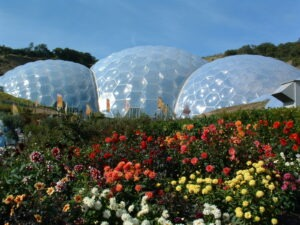 eden project with letsgowalking