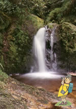 Pollan Burn waterfall on Glens of Antrim walking holiday with Let's Go Walking