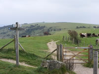 Self-guided Southern England Walking Holidays with Lets Go Walking