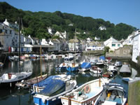 polperro harbour with Letsgowalking